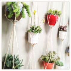 60 Cotton Rope Plant Hanger - Double. $58.00, via Etsy.