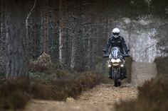 Triumph Motorcycles, Tiger Explorer XC