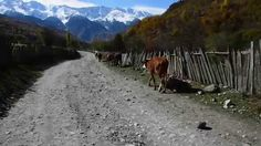 A great trip to Svaneti