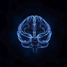 Identifican la «zona cero» del alzheimer en el cerebro. http://www.farmaciafrancesa.com