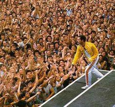 Queen Freddie Mercury, Rock Bands, Favorite Things, Musica