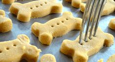 These pumpkin dog biscuits are good for making your dogs upset stomach alittle better  you can look up the recipe on google