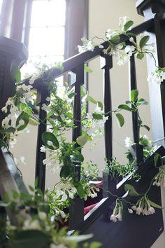 新郎新婦様からのメール 初夏の装花 松濤レストラン様へ ジャスミンの階段装花 : 一会 ウエディングの花 Stair Handrail, Banquet, Wedding Accessories, Jasmine, Wedding Flowers, Flora, Images, Stairs, Study