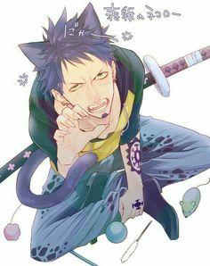 One Piece, Trafalgar Law cat Law Anime One Piece, One Piece Fanart, One Piece Luffy, Anime Demon, Anime Manga, Anime Guys, Anime Art, Trafalgar Law, Zoro