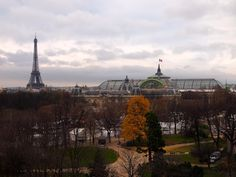 Paris… Glows Golden… | French Essence