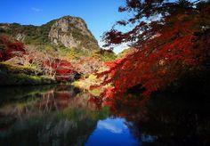 付門票也值得入園看 佐賀紅葉映照古寺廟超美 | ETtoday 東森旅遊雲