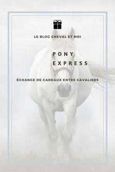 Swap entre cavaliers, le moment de se faire plaisir entre passionnés de chevaux. Cavaliers, Pony Express, Moment, Disney Characters, Fictional Characters, Blog, Gift Exchange, Blogging, Disney Face Characters