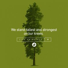 Life Principle #17: We stand tallest and strongest on our knees. -Charles F. Stanley