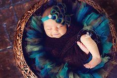 Newborn Photo Gallery 2012 | Silver Bee Photography - peacock