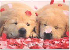 valentine pe activities