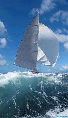 The true meaning of extreme sailing.  And here I thought sailing was peaceful and serene.