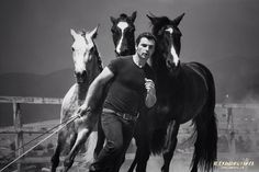 """Miron Bococi: """"I dedicated myself to horses because I felt that in life it is better to do what you like. We are all slaves, in a way –we live in a consumerist society where we work t…"""