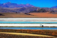 阿里 西藏  中国