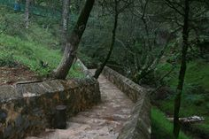 San  Joaquín,  gruta de los Herrera