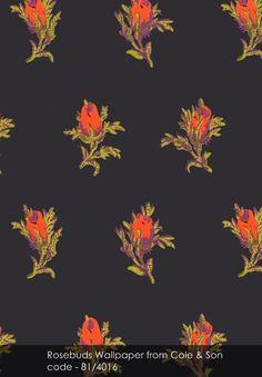 Rosebuds wallpaper from Cole