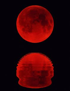 Moon rise red over Kos, Greece Gif Luna, Shoot The Moon, Moon Shadow, Sun Moon Stars, Moon Pictures, Moon Rise, Beautiful Moon, Blood Moon, Red Aesthetic