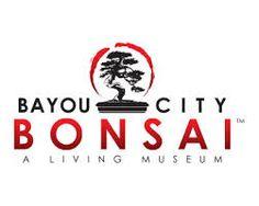 bonsai tree logo - Google Search