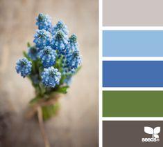 Dana Garden Design: Vedere attraverso i colori...