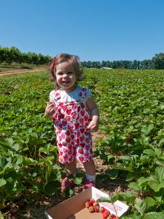 Strawberry picking in our very berry shortalls.