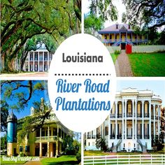 Along the Mississippi River, you can find the Top 10 River Road Plantations to see beautiful architecture, rural Louisiana and important history lessons.