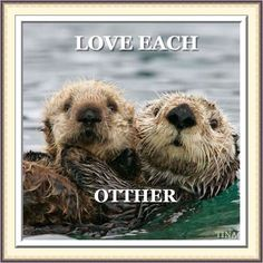 love each otther