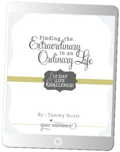 eBook : Finding the Extraordinary in an Ordinary Life Subscribe - Tammy Strait