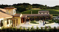 Vineyard Auckland, Matakana Vineyard Winery: Ascension Wine