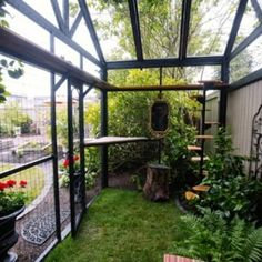 Allowing your cat to freely roam the neighborhood is not a good idea. A Catio or cat enclosure! Outside Cat Enclosure, Diy Cat Enclosure, Reptile Enclosure, Pet Enclosures, Cat Fence, Outdoor Cats, Cat House Outdoor, Paludarium, Vivarium
