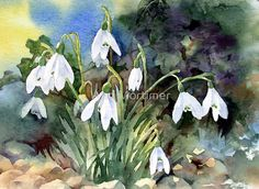"""""""Snowdrops and Ivy"""" by Ann Mortimer"""