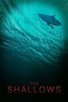 The Shallows Movie Poster 24x36