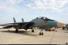 Grumman F-14A Tomcat aircraft picture