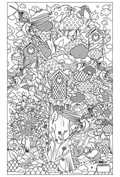 Free coloring page «coloring-adult-birds-garden».