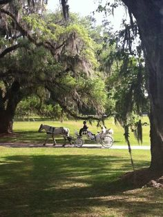 Beautiful wedding at the Rose Hill Mansion, Bluffton SC