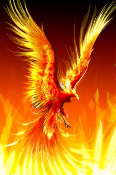 The Phoenix Rising Reiki is a healing energy that can be used to heal yourself, animals, plants, and situations. By using the symbol you can begin to transform your life.  One thing that was discovered in passing this attunement to others, was that it can bring totem animals and you may see them around you, even if you do not know what animals you have as Animal Spirit Guides. 30 min Attunement & pdf manual included.