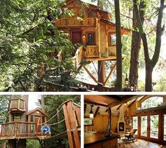I would just live in the tree house instead of my home. Future House, My House, House Plans With Pictures, Tree House Plans, Cool Tree Houses, Tree House Designs, Diy Holz, Tree Tops, In The Tree