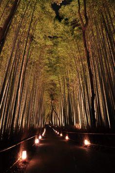 Arashiyama, Kyoto. Japan