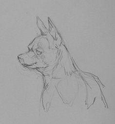 Arte Realista de Takiguthi: desenho cães