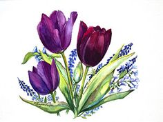 Tulip Watercolor Painting - Tulips by Patricia Allingham Carlson
