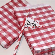 red gingham sandwich bag