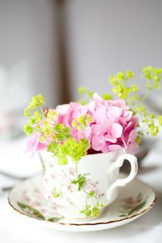 Shabby chic cup with pink hortensia