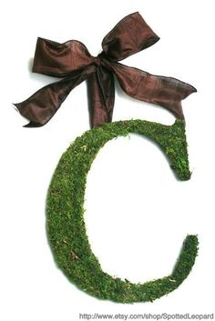 Monogram Wedding Door Wreath - Moss Covered 12 inch Letter, Initial,