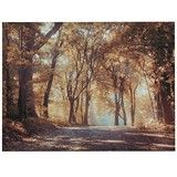 Autumn in the Park Exclusive Canvas