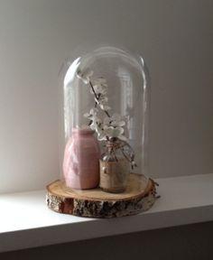 Glazen stolp met vaasjes, boven een stukje hout.