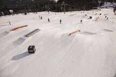 Snowlab.de - Snowboard-News: Feldberg Jib Session -Tine