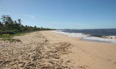 A beach to yourself in Brazil  There are no roads, crowds or chichi tourist trappings in Caraiva, just idyllic beaches on a remote stretch of Brazil's Bahia coast