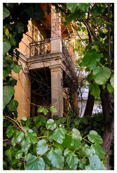 """""""Jungle Home""""  Abandoned house at Thessaloniki, Greece 2012"""