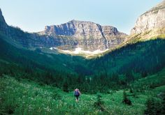 """The back country of Montana gets """"rowdy"""" in the fall.  If you are looking for heightened wildlife adventures, now is the time to come and hike our glorious mountains!  The elk are bugling, the bears are foraging, the birds are nesting - wildlife is really, really active this time of year!"""