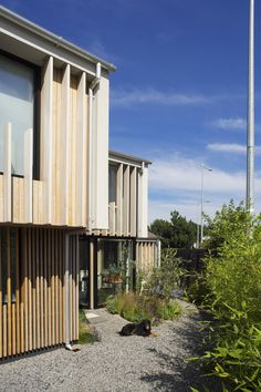 A certified passive house completed recently in South Dublin It was designed as a four bed home/office. The limited access corner garden site with good. Room With Plants, Plant Rooms, Garden Site, Corner Garden, Passive House, Cladding, Home Projects, Building A House, Architects