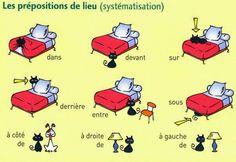 Francês fácil!
