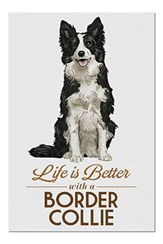 A4 Border Collie Pencil Drawing Dog watching head down Black  White waiting